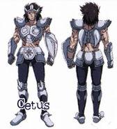Cloth de Cetus LC