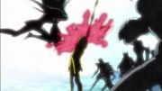 Genbu herido por la Tenchihōmetsuzan