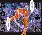 Aries God Gold Cloth Mu1