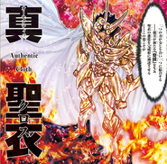 Shin Gold Cloth du Lion (G.A.)