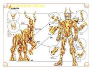 Schéma de l'Armure du Capricorne