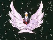 Cisne 10