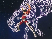 Seiya with the Pegasus Cloth