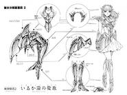 Schéma de l'Armure de la Cloth du Dauphin