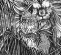 Greeding Roar Regulus