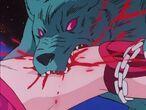 Furia de Lobo