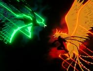 Peacock vs Phoenix
