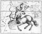 Représentation de la Constellation du Sagittaire par Johannes Hevelius