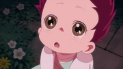 Kōga bebé