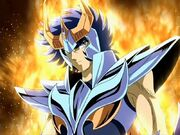 Phoenix ikki final bronze cloth