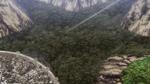 Floresta dos Mortos