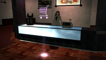 On Thin Ice in Imperial Square - interior checkout