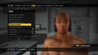 Head Hair - Balding Mullet