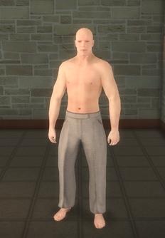 Broken NPC 4 - character model in Saints Row 2