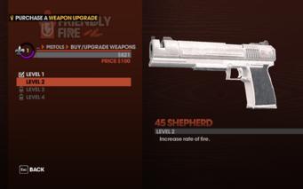 45 Shepherd Level 2 description