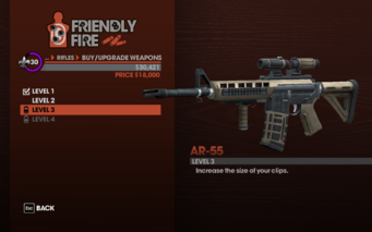 AR-55 Level 3 description