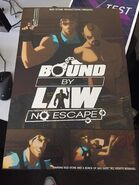 Bound by law poster