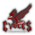 Saints Row 2 clothing logo - cycles