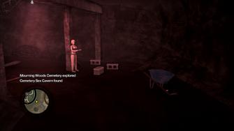 Secret Area - Cemetery Sex Cavern found