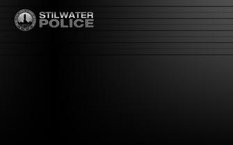 Saints Row The Third Player Customization lineup background