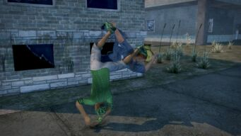 Sons of Samedi Fighting Style - after Sweep Reverse Hurricanrana