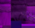 Saints purple swatches.png