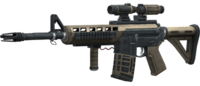 AR-55 Level 1 model