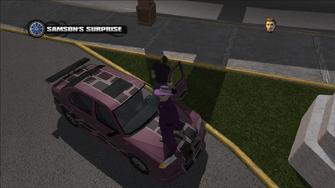 Samson's Surprise - random purple Zircon