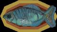 Bar fish