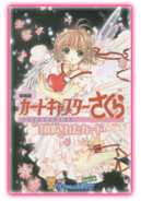 CCS Movie 2 Program
