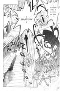 Transformación de Sombra (manga)