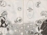 Syaoran se Confieza (manga)