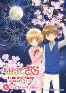 Sakura x Syaoran Poster
