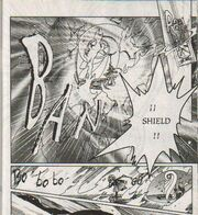Escudo1 Manga