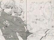 Sakura y Syaoran (manga)