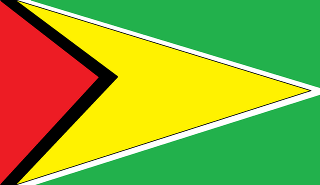 File:A guyana flag.png