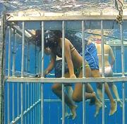 Waterborne Cage