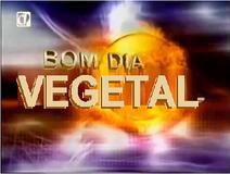 Bom Dia Vegetal (2002)