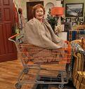 Nona in a bag in a cart