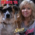Sam and a dog, 26 days until premiere