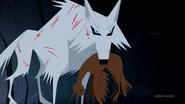 Wolf hunted