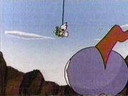 Speedy Cuckoo-bird 5