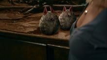 1x06 - Ashley convinces the Nubbins to show themselves