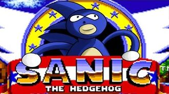Sanic The Hedgehog - GOTTA GO FAST!!