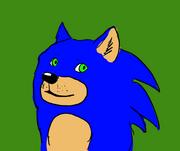 Doge Sanic fusion