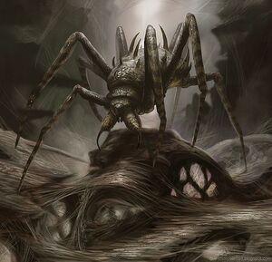 Arachnida Matriarch