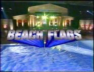 Beach Flags 2000