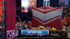 ANW7 Butterfly Wall