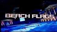 Beach Flags 2003