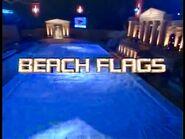 Beach Flags Spring 2004